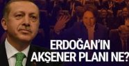 AK Parti'nin Meral Akşener planı!