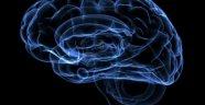Beynimizin %100'ünü Kullanırsak Ne olur?