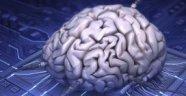 Araştırmacılar İlk Defa İnsan Beynini İnternete Bağladı