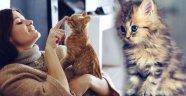 Evde kedi besleyenler için 5 tüyo