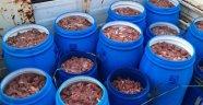 İlk iftar öncesinde 5 ton Domuz eti yakalandı