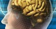 İnsan Beyni Niteliğinde Çip: Darwin