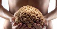 İnsandaki ikinci beyin nedir?