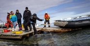 Türk bilim insanlarının Antarktika çalışmalarından yeni görüntüler