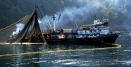 Türkiye nere Moritanya nere… 200 Türk balıkçı Afrika'da mahsur kaldı