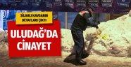 Uludağ'da cinayet! Jandarma 17 kişiyi gözaltına aldı