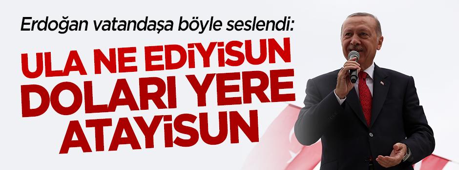 Başkan Erdoğan: Ula ne ediyisun, doları yere atayisun!