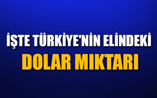 Erdoğan Türkiye'nin elindeki dolar miktarını açıkladı
